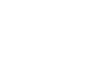Bird Recovery International